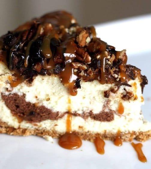 turtle_cheesecake_004_copy